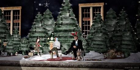 Weihnachtslesung_046